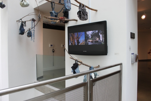 Into the WIld- Installation View
